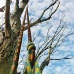 Tree Culture Arborist Melbourne