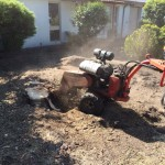 Stump Grinding Melbourne